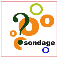 Sondage_4